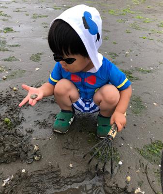 潮干狩りをする2歳の息子