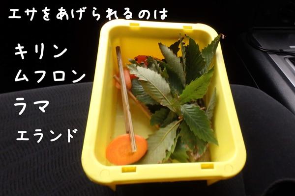 富士サファリパークのナビゲーションカーからあげられるエサの種類
