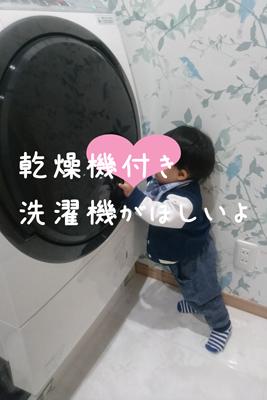 乾燥機付きドラム洗濯機と1歳児の写真
