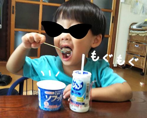 薬(整腸剤)が入ったヨーグルトを美味しそうに食べる息子