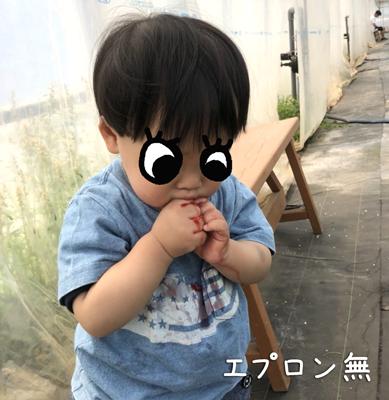 苺を服を汚しながら豪快に食べる1歳児