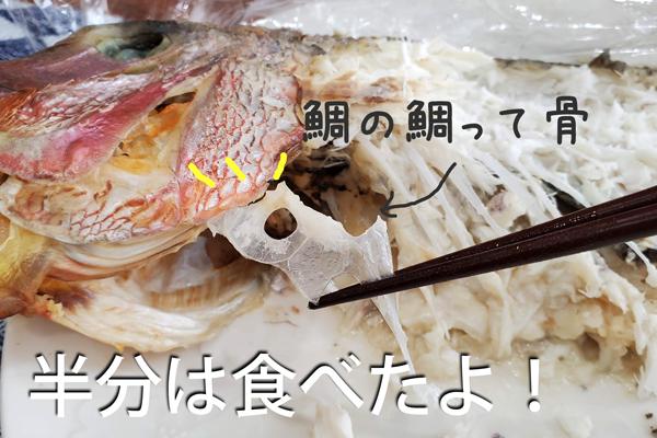 お食い初めの鯛の骨(鯛の鯛)