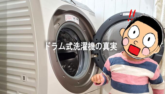 ドラム式洗濯乾燥機の扉を途中で開けてみた時のブログ